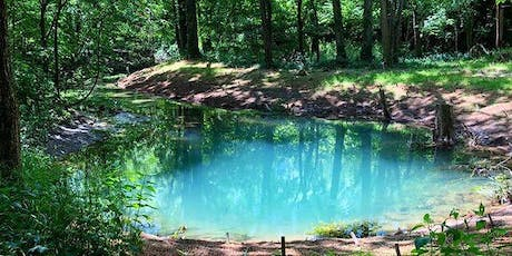 MindTravel in Lexington, KY at McConnell Springs Park tickets