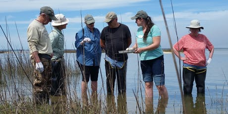 Oyster Ecology tickets