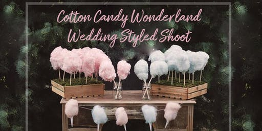 Cotton Candy Wonderland Wedding Workshop and Styled Shoot
