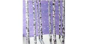 PNW Winter Birch Trees Paint & Sip Night - Art...