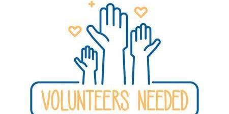 Volunteer Engagement Strategies for Success