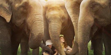 Love & Bananas Movie Screening tickets