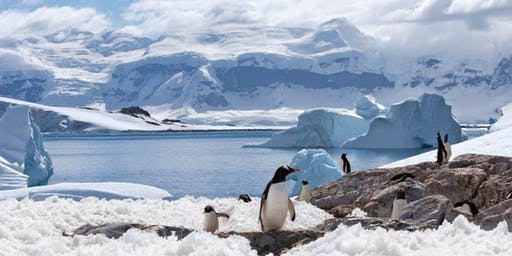 Silversea Expeditions and Ocean Cruises