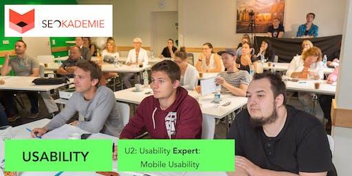 Usability Basics (U2), Mobile Usability, User Experience Optimization (SEO)
