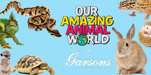 Our Amazing Animal World at Garsons Esher