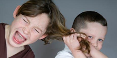 Addressing Negative Behaviour tickets