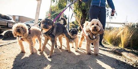 Morning Dog Walk with Danny Silk PT for the LGBT+ Sport Fringe Festival tickets