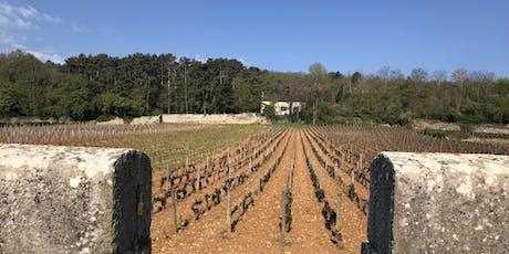 Wine Tasting: Burgundy vs. the World biglietti