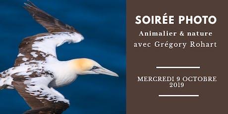 SOIRÉE PHOTO ANIMALIÈRE ET DE SAFARIS & NATURE billets