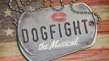 """Dogfight"""