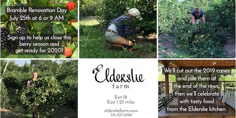 Elderslie Farm Volunteer Bramble Renovation Day tickets