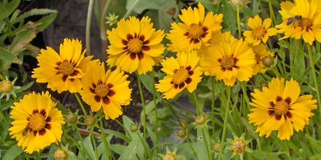 Gardening with Native Plants tickets