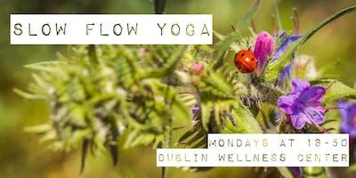 Slow Flow Yoga - 1h class, 18-50, Mondays - Dublin Wellness Center