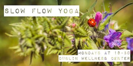 Slow Flow Yoga - 1h class, 18-50, Mondays - Dublin Wellness Center tickets