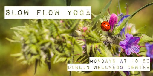 Slow Flow Yoga - 1h class, 18-50, Mondays - Dublin Wellness Center