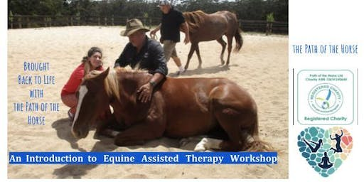 Return to Life with Horses - An Equine Assisted Therapy Workshop