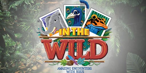 In the Wild - VBS