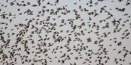 Wader Quest's Inspiration of Waders Day and AGM