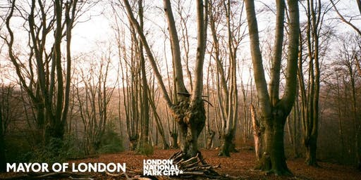 Living Symphonies: Nature Sense Tours