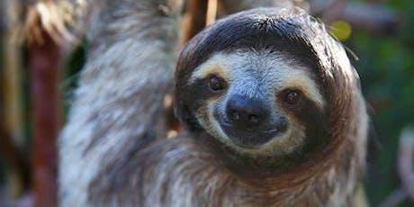 Sloth Encounter tickets