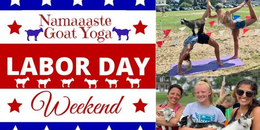 Beach Goat Yoga Labor Day Weekend: Namaaaste Goat Yoga