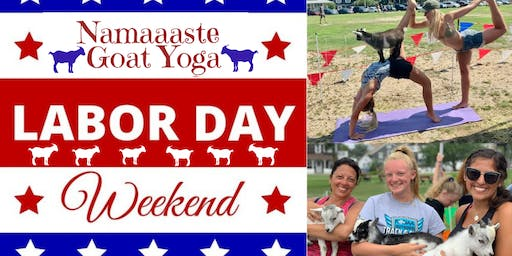 Beach Goat Yoga Labor Day Weekend: Namaaaste Goat Yoga 12pm