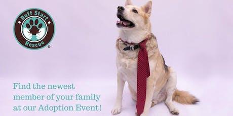 Pet Evolution Arden Hills Adoption Day Event tickets