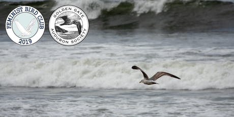 Birdwatching at Land's End with Feminist Bird Club and Golden Gate Audubon tickets