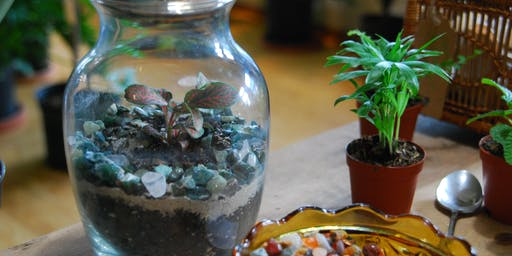 Tropical Terrarium Building at Charmed Kitchen
