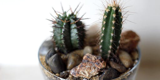 Cacti Building Workshop