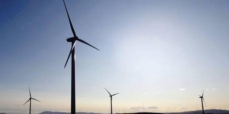 The Europeanization of the Renewable Energy Directive in France and the UK tickets