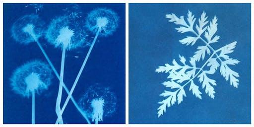 Botanical Solar Printing