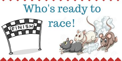 MVTH Mouse Race