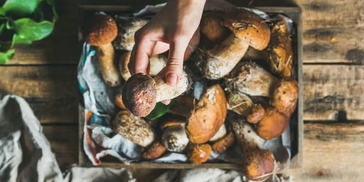 A Foray for Mushrooms Farmed & Foraged