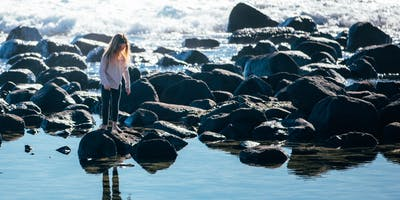 NaturallyGC Rocky Shore Explore
