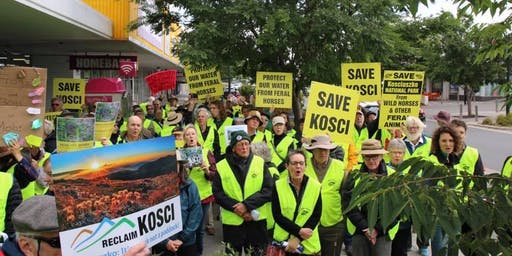 Save Kosci petition protest and debate in Sydney!
