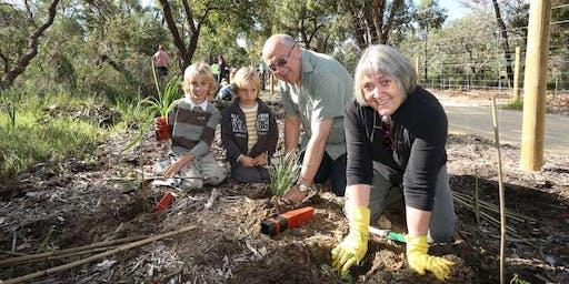Star Swamp Community Planting Day