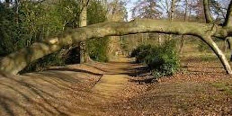 Mindful Walk Lily Hill, Bracknell tickets