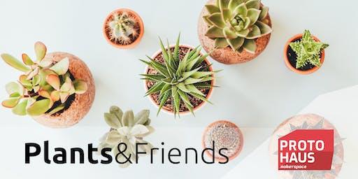 PLANTS & FRIENDS - Pflanzentauschbörse, DIY & Vortrag