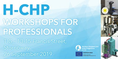 H-CHP Workshop for professionals