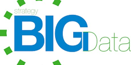 Big Data Strategy 1 Day Training in Brussels tickets