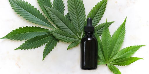 Demystifying the Legal Use of  Cannabis and Hemp for Medical Purposes