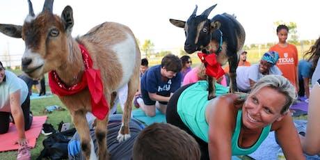 Goat Yoga in Watauga, TX! tickets