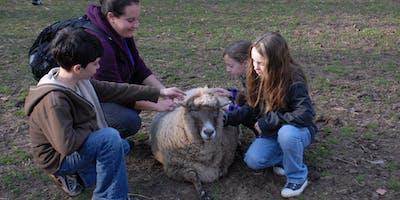 Home School Days at Hard Bargain Farm