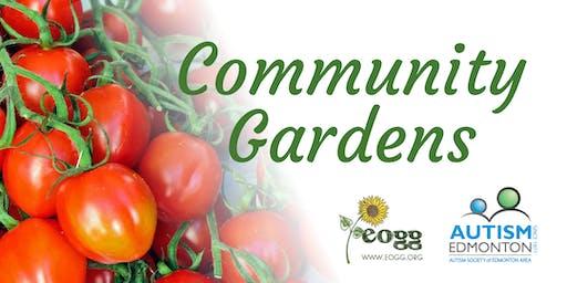 Community Gardens - Aug 3