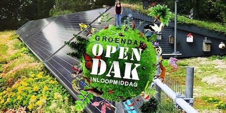 OPEN DAK INLOOP DAG tickets