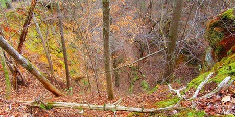 History Hike: Iron Hill Trail tickets