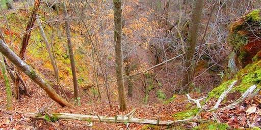 History Hike: Iron Hill Trail