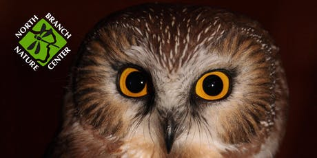Saw-whet Owl Public Banding Demonstration tickets