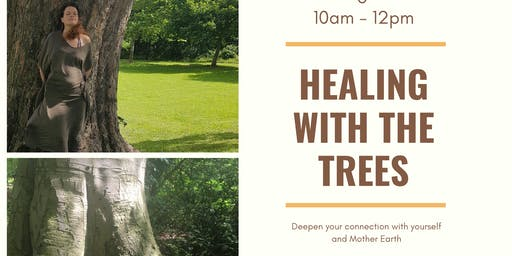 Healing With The Trees